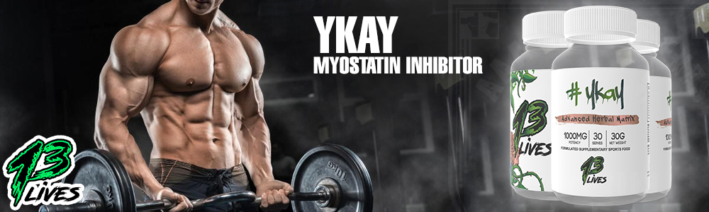 13-lives-ykay-banner